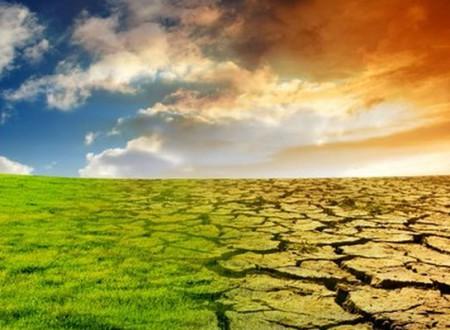 Итоги 20-ой конференции по вопросам изменения климата