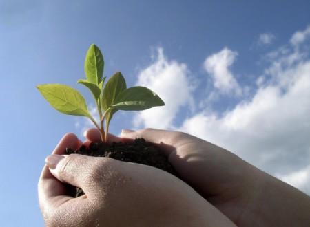 Выход Постановления Правительства «Об утверждении критериев отнесения объектов, оказывающих негативное воздействие на окружающую среду, к объектам I, II, III и IV категорий»