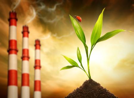 Федеральный закон «Об экологической экспертизе» от 23.11.1995 г. №174-ФЗ (ред. от 29.12.2004 г.) (с изменениями и дополнениями, вступившими в силу с  01.01.2007 г.)