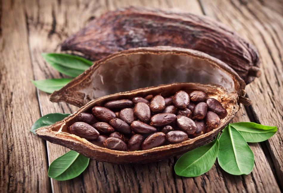 Новый стандарт ИСО и CEN может ударить по бизнесу фермеров, выращивающих какао