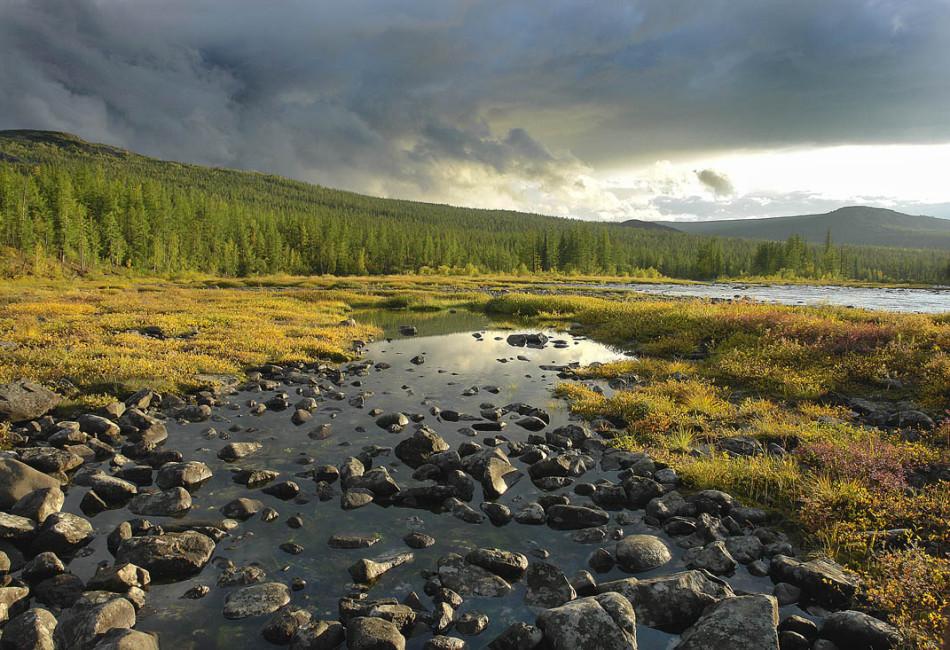 Зонирование малонарушенных лесных территорий в Сибири и на Дальнем Востоке