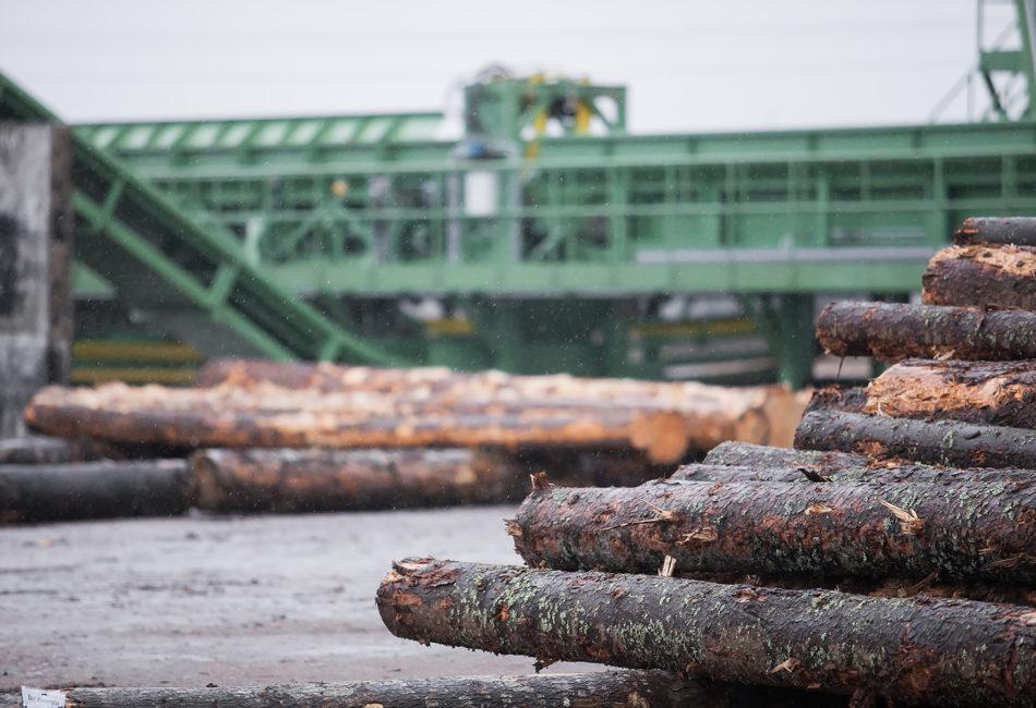 Товары со знаком «дерево с галочкой» FSC включены в мобильный гид по зеленым товарам «Экополка»