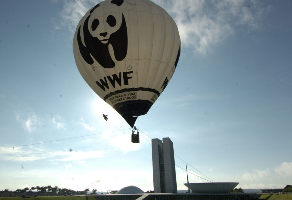 Реальные плюсы сертификации обобщил WWF