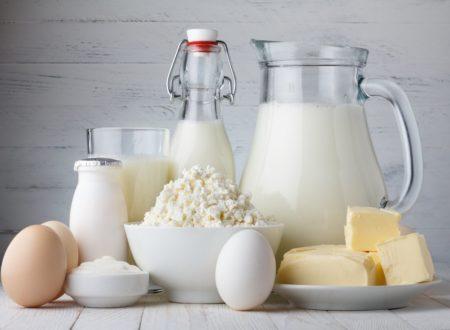 В Петербурге создали систему защиты молока от подделок с помощью блокчейн