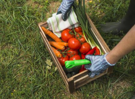 Системы менеджмента пищевой безопасности: Глобальный стандарт BRC теперь в Ассоциации по сертификации «Русский Регистр»
