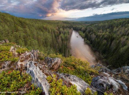 «Стражи леса»: FSC России поддержал WWF России